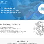 fusui_websv